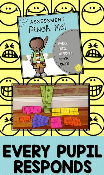 Check for Understanding Class set of pinch cards from Positively Learning