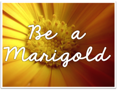 Be a Marigold