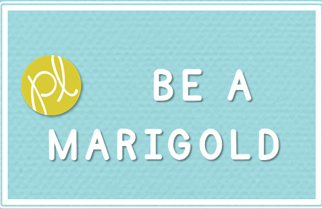 Marigold Teacher