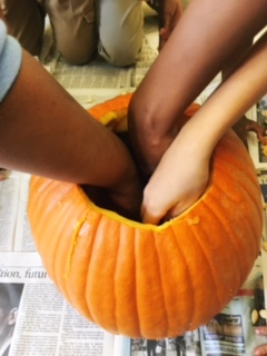 Positively Learning Pumpkin Time: Pumpkin Investigation