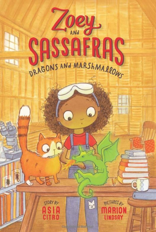 Positively Learning Blog Zoey and Sassafras Chapter Book