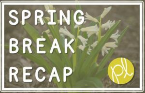 Spring Break Recap