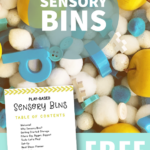 Getting Started with Sensory Bins