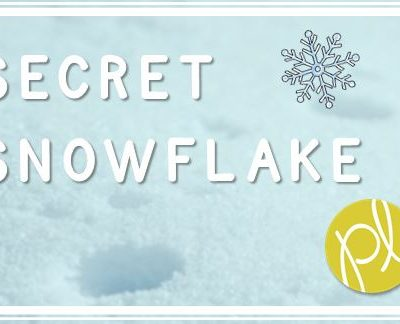 Secret Snowflake at School